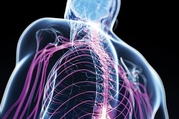 Что такое синдром Броун Секара, каковы причины появления заболевания?