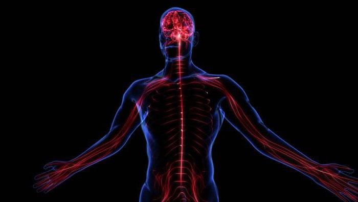 Какие побочные эффекты может вызвать препарат Метипред