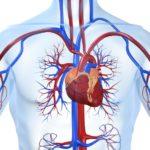 Преимущества эндоскопической операции по удалению грыжи позвоночника