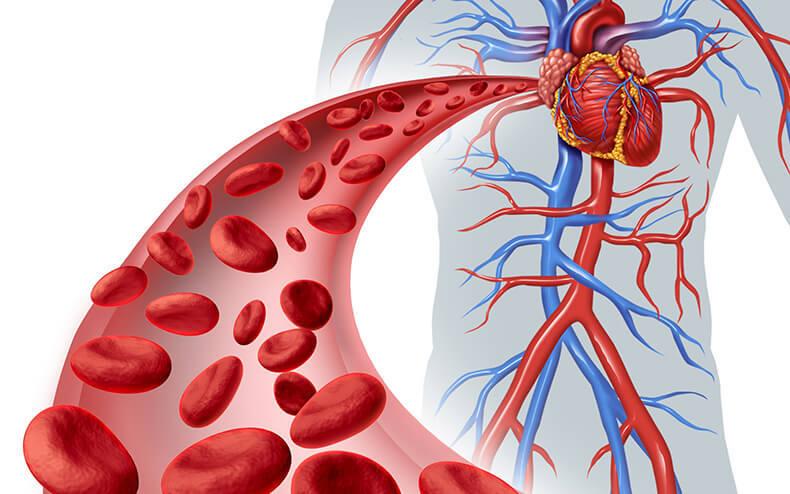 Простой и эффективный способ лечения остеохондроза солью и маслом