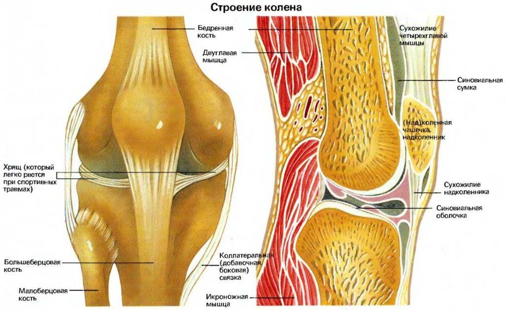 Как вылечить жидкость коленную thumbnail