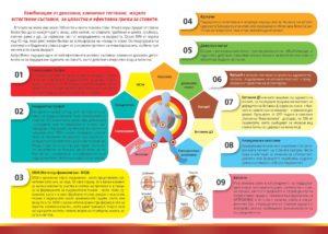 Комплексное воздействие на хрящевую ткань биодобавки Артрофлекс