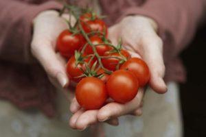 Можно ли употреблять в пищу помидоры при подагре
