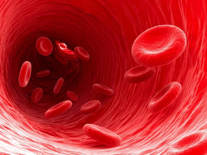 Подробное описание действия препарата Ацеклофенак на человеческий организм