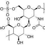 Полная инструкция по применению препарата Хондроксид Форте