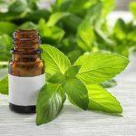 Витаминно-минеральная добавка препарат Артро-Плюс