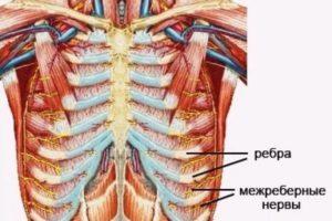 Возможные причины опоясывающей боли под ребрами и в спине