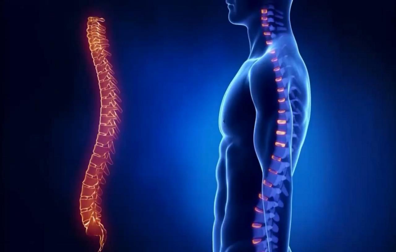 Все о травмах спинного мозга — какие бывают и как их лечить